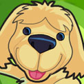 SUPERPUP GAMES (Teletoon)