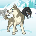 DOGSLED (Teletoon)